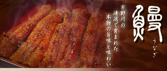鰻(うなぎ)吉野川の清流で育まれた本物の旨みと味わい